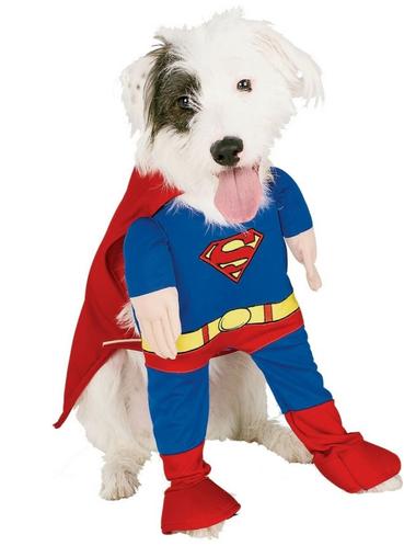 Disfraz de Superman para perro