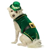 Leprechaun Kostüm Deluxe für Hunde