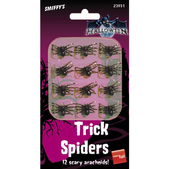Set de arañas negras