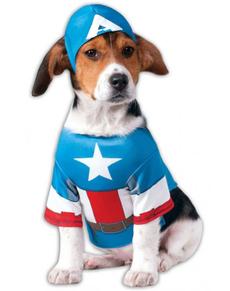 Disfraz de Capitán América para perro