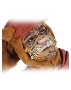 Máscara de gato callejero para adulto