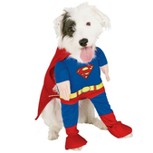 Hundekostüm Superman