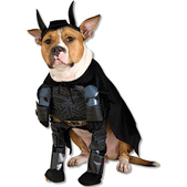 Costume de Batman The Dark Knight Rises pour chien