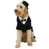 Hundekostüm mit Smoking