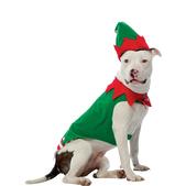 Fato de elfo para cão
