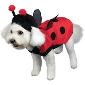 Hundekostüm Glückskäfer